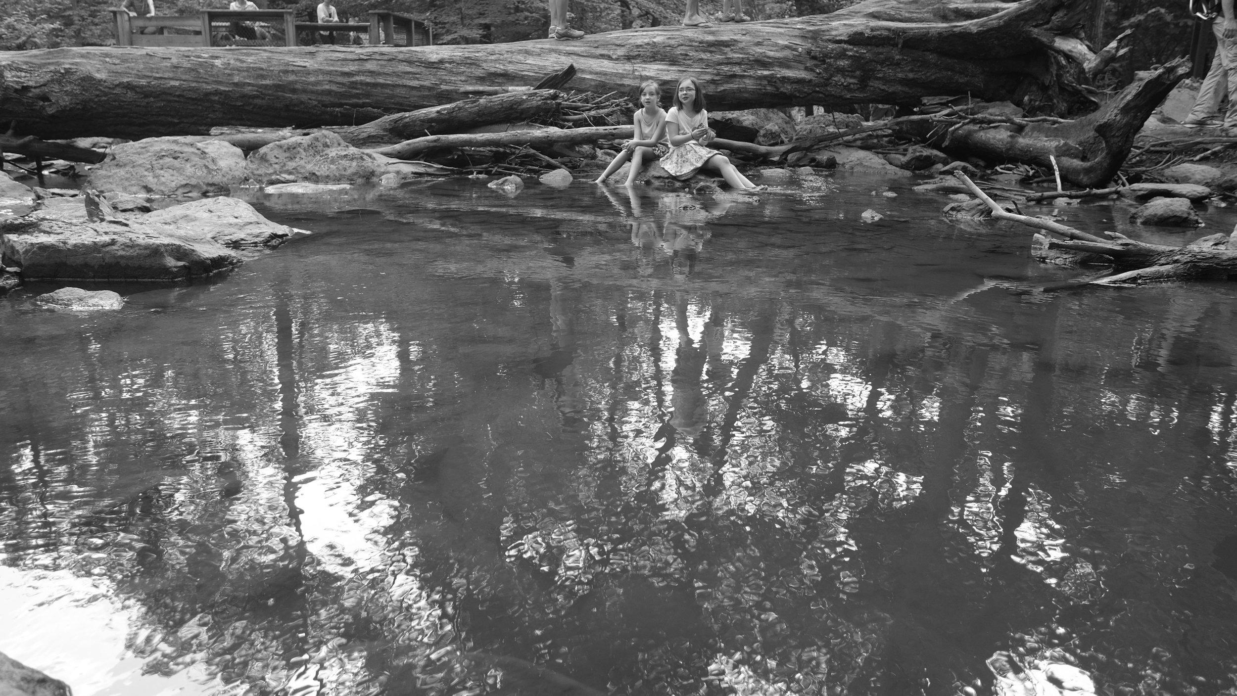 Cunningham Falls 2019 blog-16.jpg