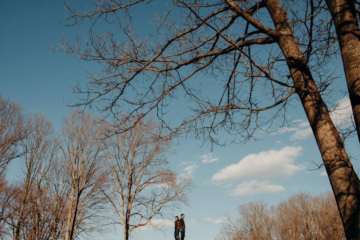 meadowlark botanical gardens engagement-3.jpg