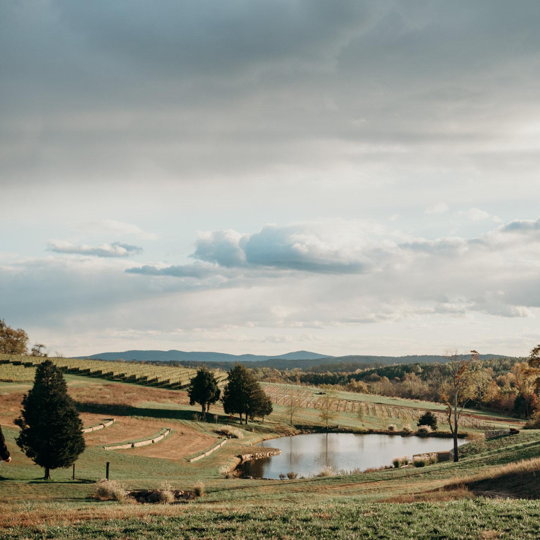 stone tower winery engagement-1.jpg