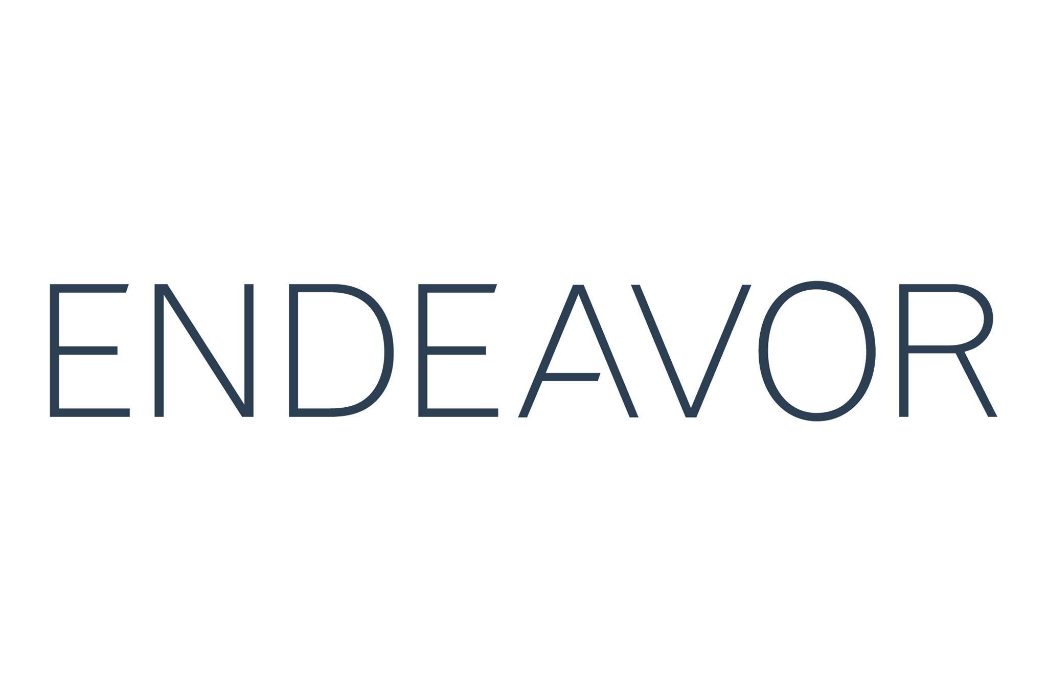 endeavor-logo-charcoal1.jpg