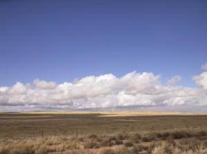 arizona desert view