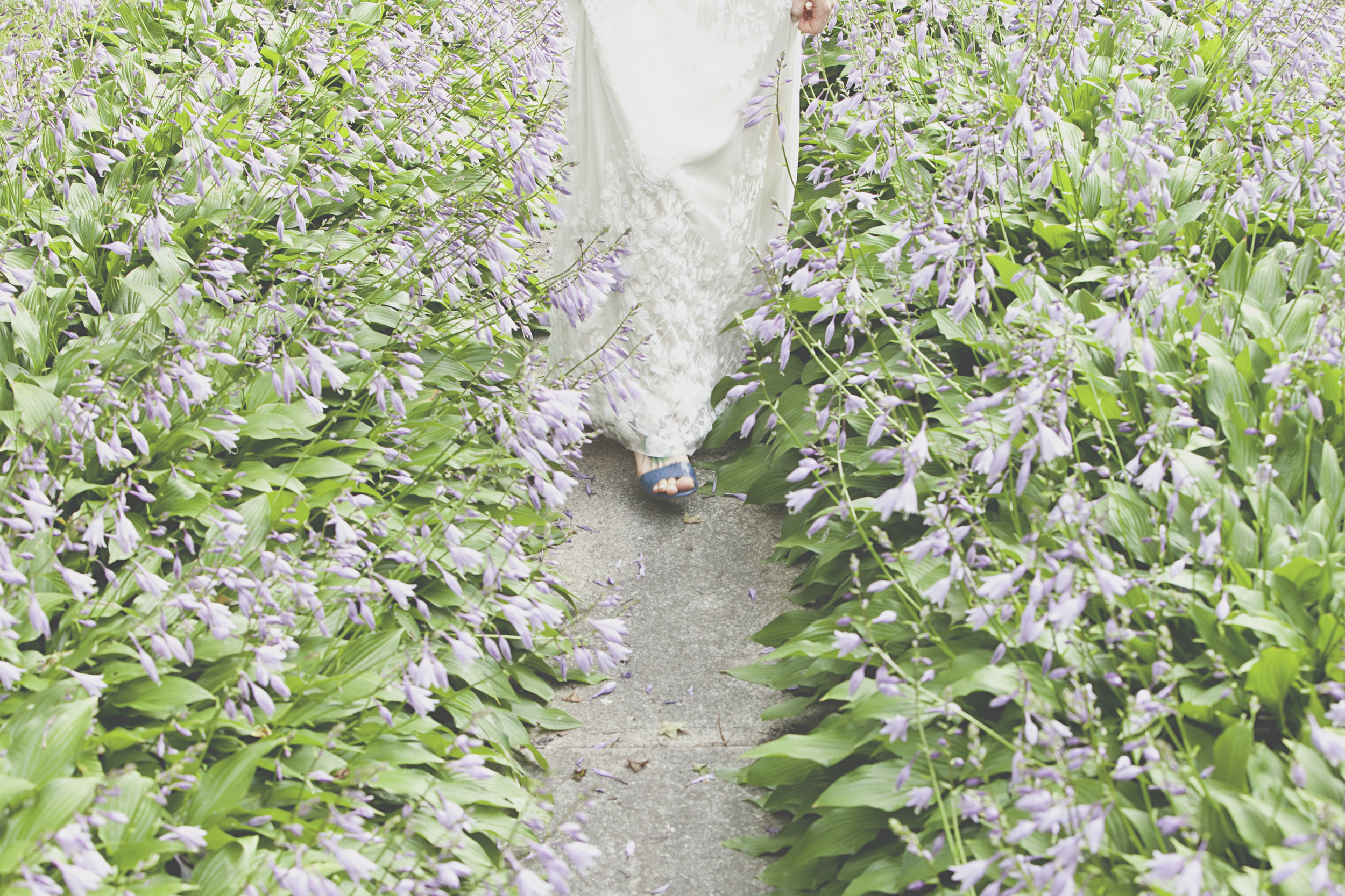 Bride walking through flowers