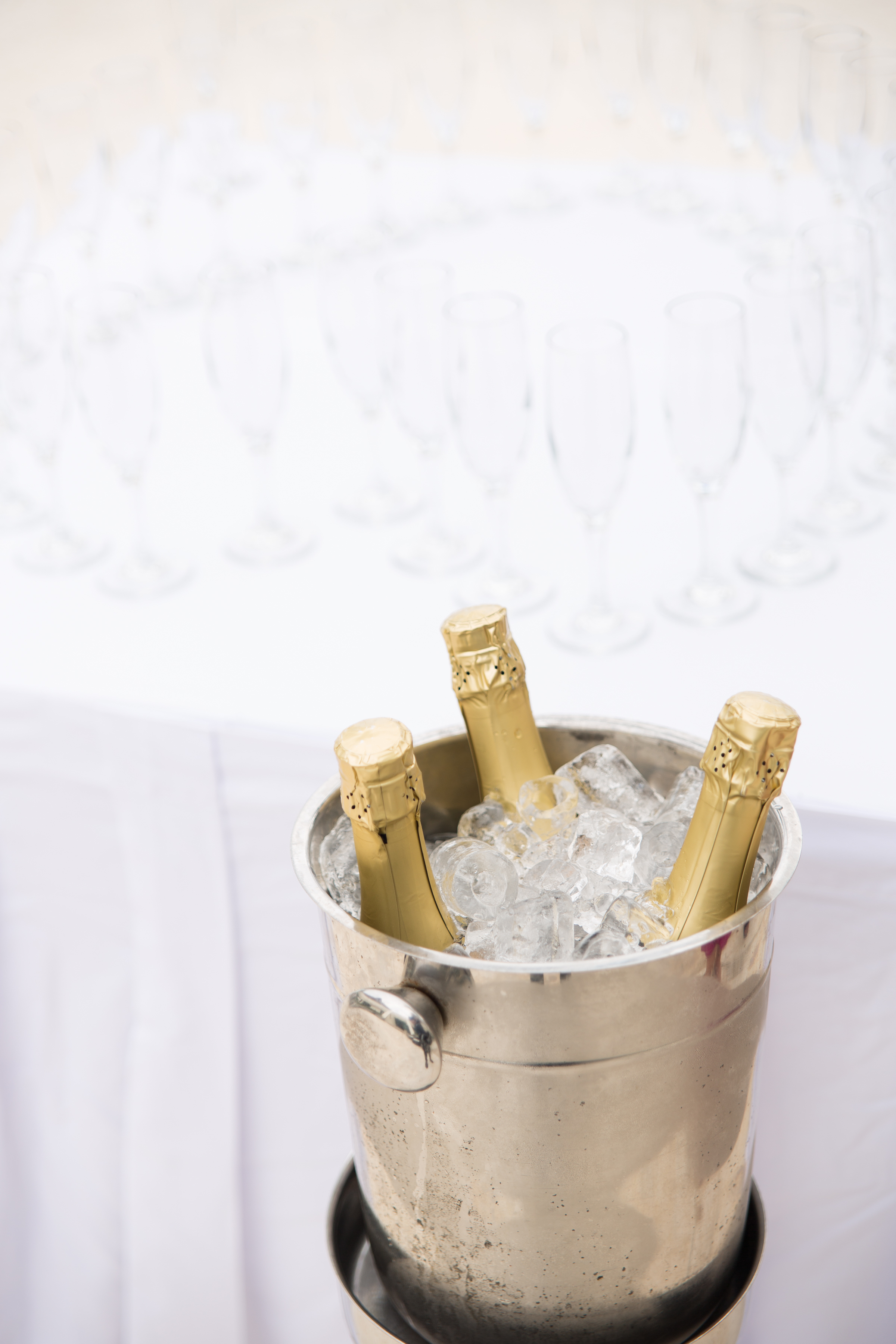 champagne in mexico