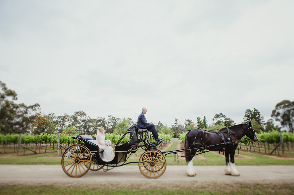 Bride and Groom Vineyard Photography - Wedding Planning Hunter Valley