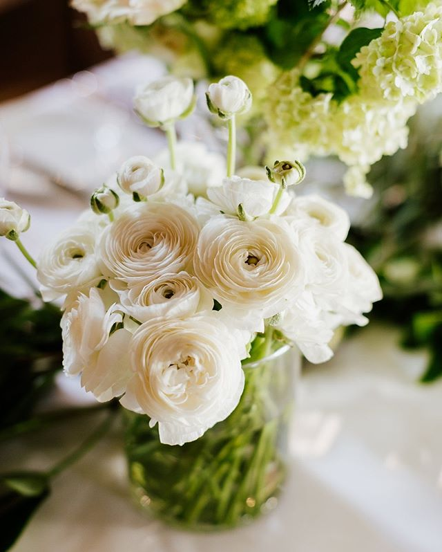 Kiera & Daniel ✨ To see more from this beautiful wedding, visit our blog via the link in our bio ✨⠀⠀⠀⠀⠀⠀⠀⠀⠀⠀ .⠀⠀⠀⠀⠀⠀⠀⠀⠀ .⠀⠀⠀⠀⠀⠀⠀⠀⠀ Florals & Styling: @peoniesboutiqueweddings • Ceremony & Reception Venue: @circa1876 • Photography: @gezxaviermansfieldphotography • Officiant: @montykingcelebrant • Make-Up: @helensotismakeupartist • Hair Stylist: @reneewalkom • Cake: @michellethecakechef⠀⠀⠀⠀⠀⠀⠀⠀⠀ .⠀⠀⠀⠀⠀⠀⠀⠀⠀ .⠀⠀⠀⠀⠀⠀⠀⠀⠀ #peoniesweddings #weddings #weddingday #weddingphoto #weddinginspiration #weddingdetails #weddingdecor #weddingplanner #weddingplanning #weddinginspo #weddingseason #weddingideas #weddingstyle #weddingstylist #events #eventplanner #eventplanning #bride #groom #bridetobe #ido #gettingmarried #florist #floraldesign #weddingflowers #floraldesigner #flowers #flowerstagram #flowersofinstagram #flowerlovers