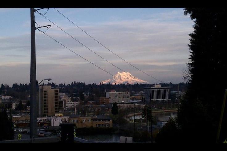 Mt. Rainier from Olympia.