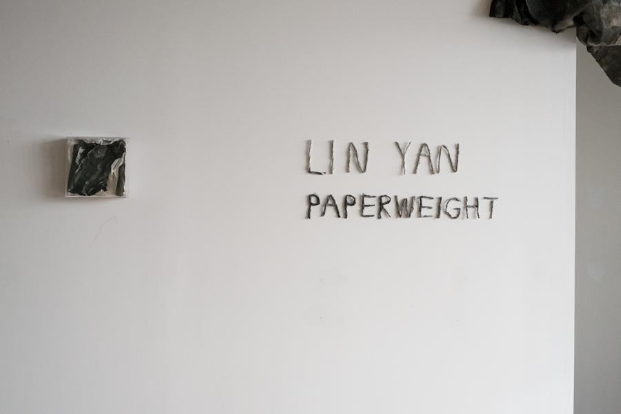 LinY at Fou_inst_1_Photo by YangJ.jpg