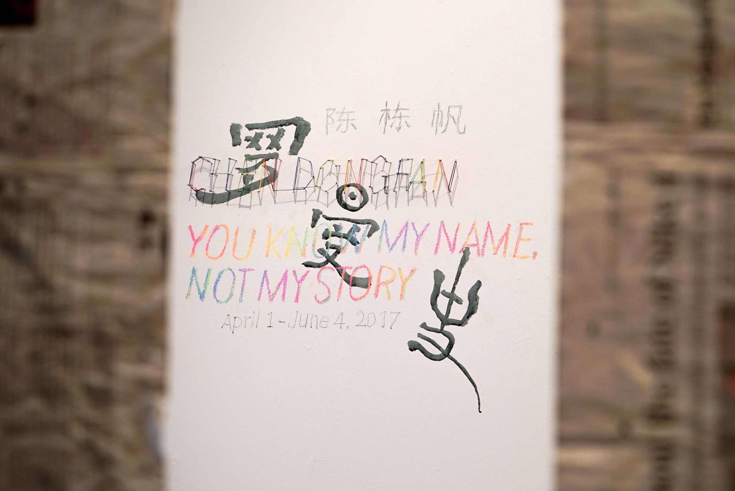 Chen Dongfan: You Know My Name, Not My Story Installation View