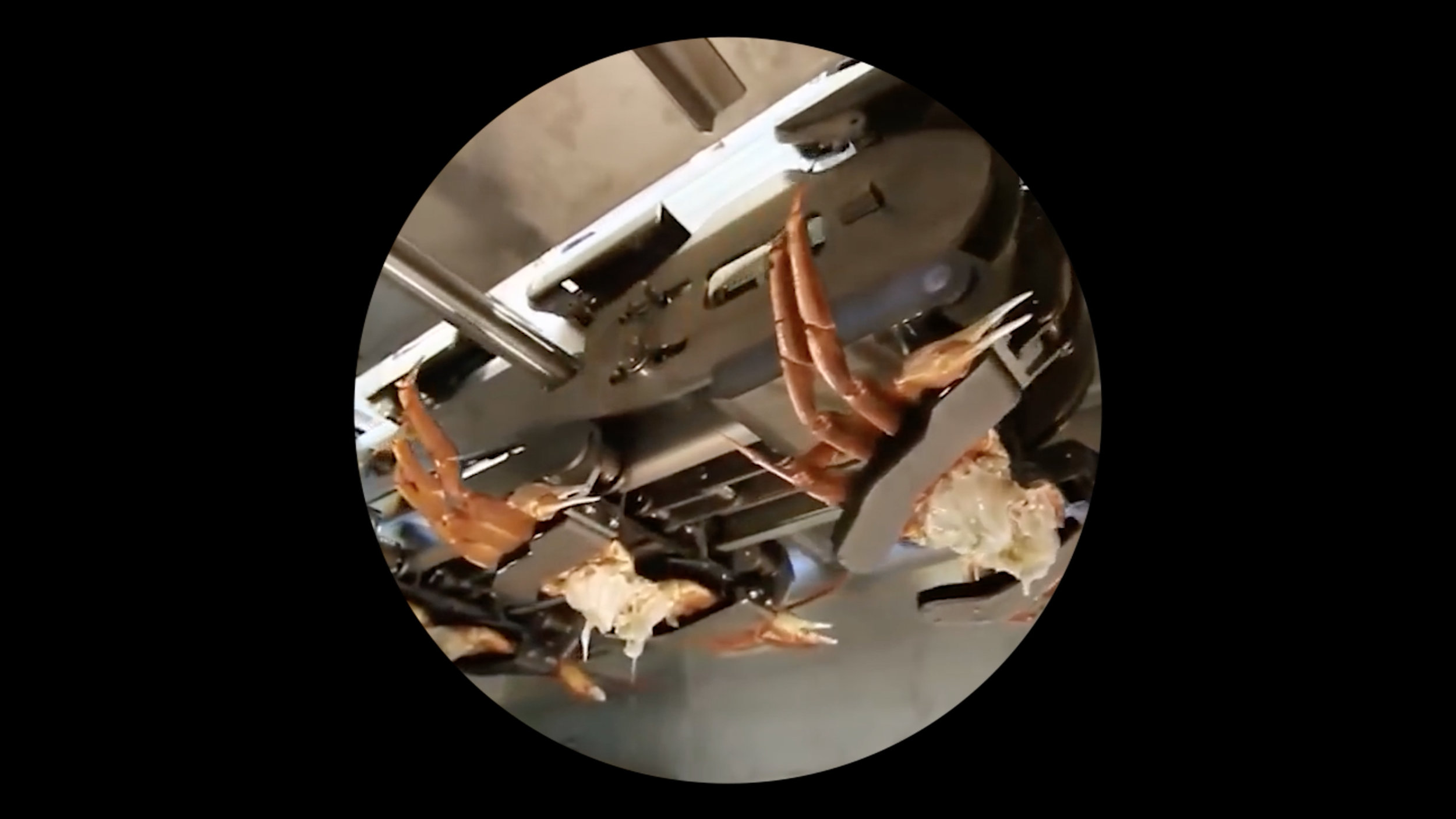 Jing Lin,  Machinetopia , 2018. Loop video, Edition of 5 + 1 AP. ©Jing Lin, courtesy Fou Gallery | 林璟, 机器托帮, 2018. 循环视频,版数:5 + 1 AP. ©林璟,致谢否画廊