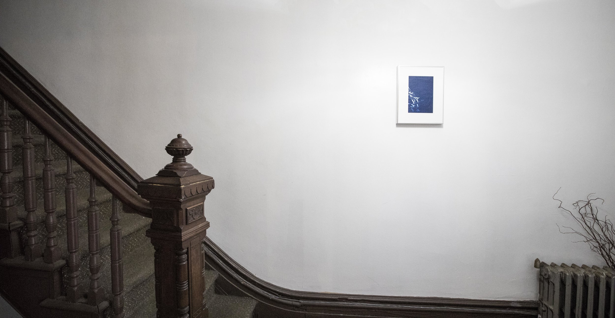 Han Qin: Ethereal Evolution  installation view, photograph by Nadia Peichao Lin ©Han Qin, courtesy Fou Gallery