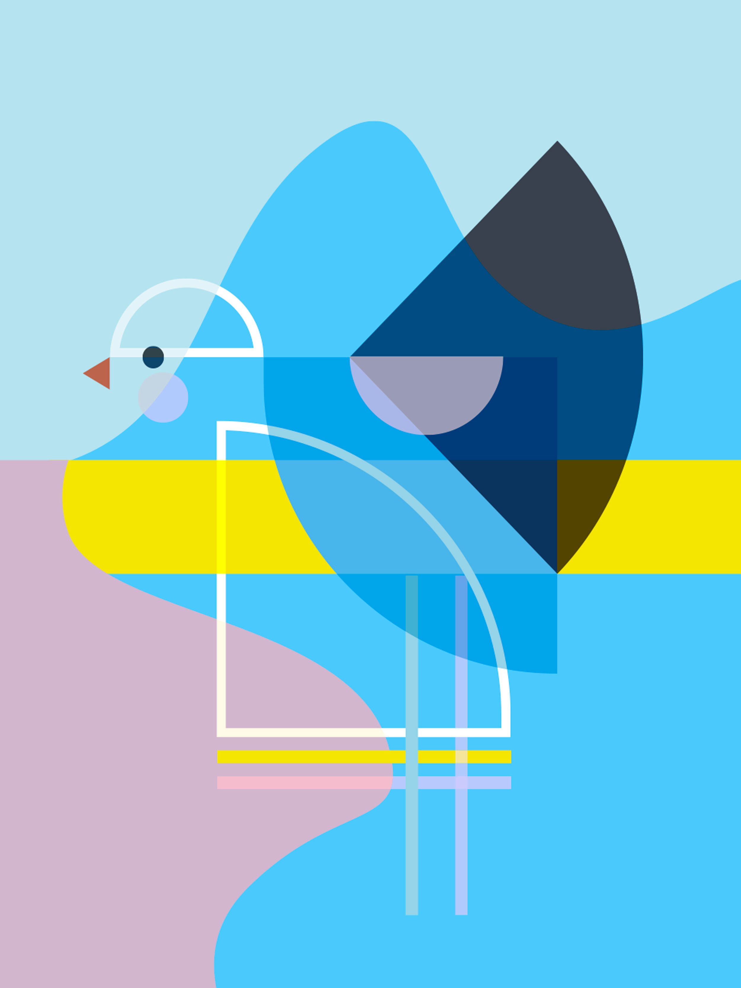 LD_Bird_3.jpg