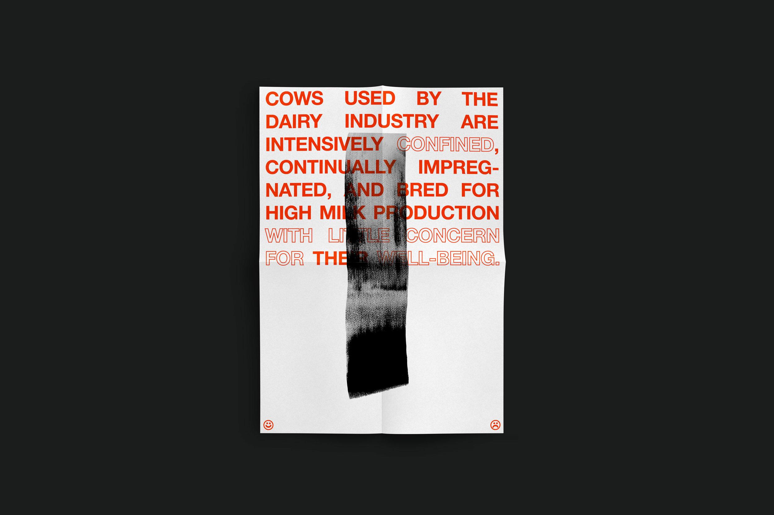 Cow_5.jpg