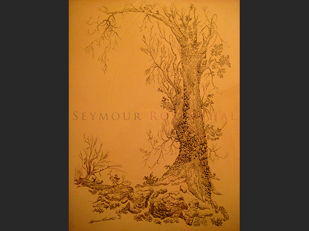 Study of a Tree 1961 II