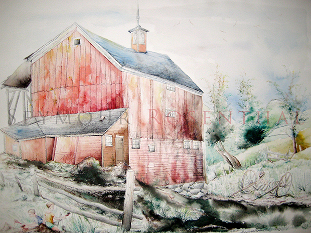 Dan by Vermont Farm