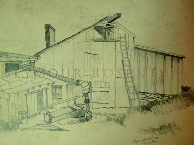 Conn. Farm