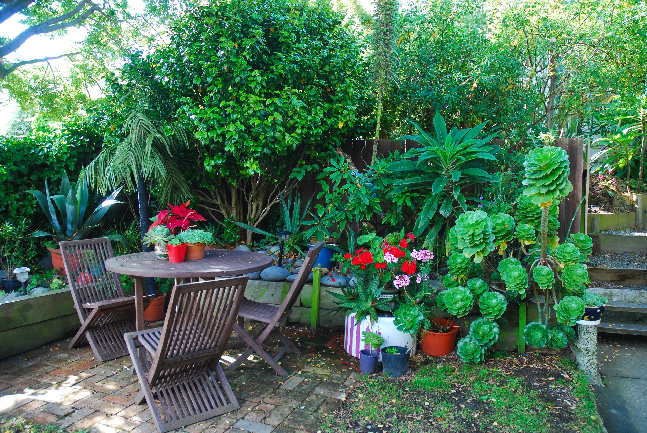 Beautiful, green garden at Arden Street House