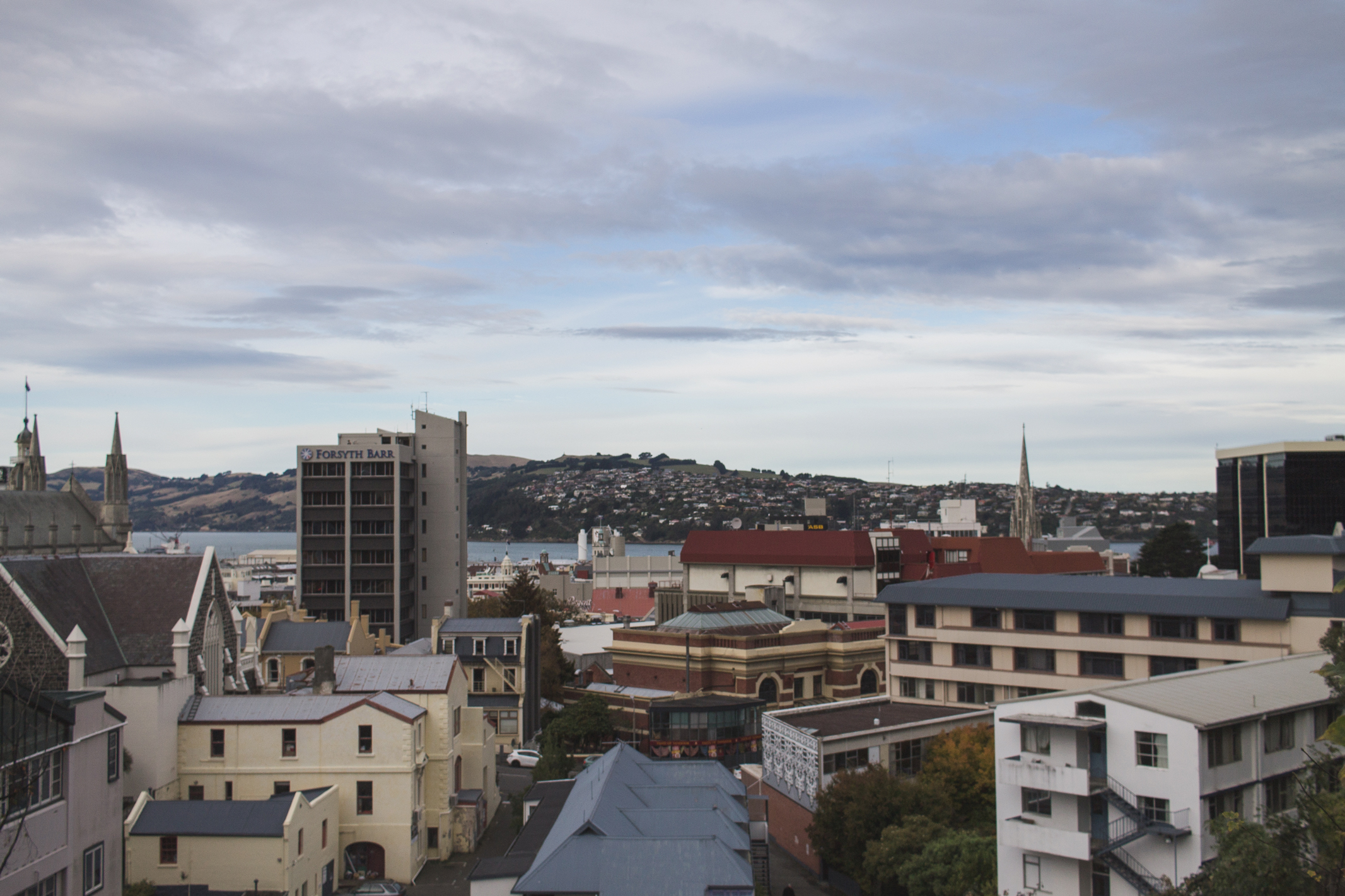 View of our town, Dunedin
