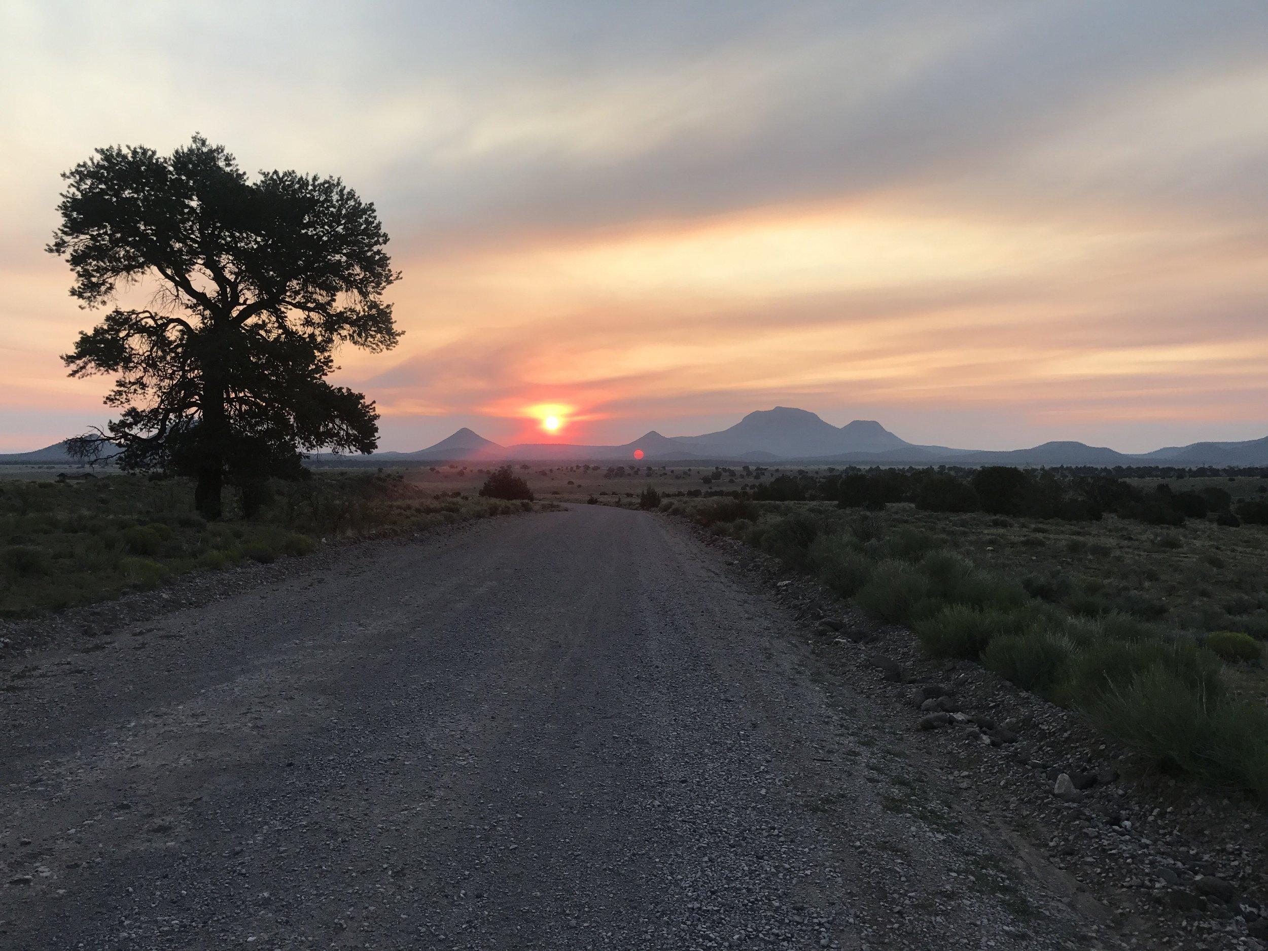 New Mexico surprises