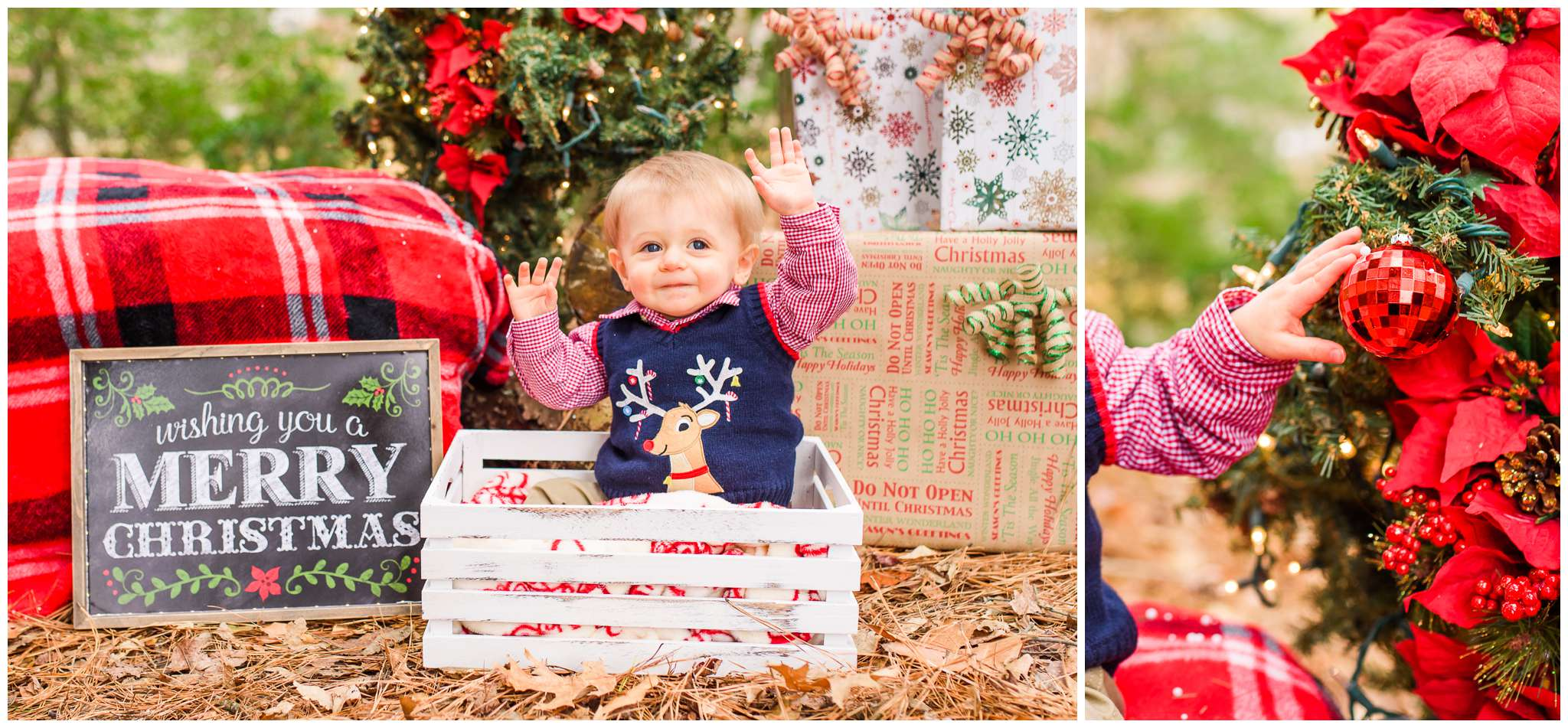 This little cutie is Carter! Look at that little hand on the ornament. He was just perfect for his photo shoot!