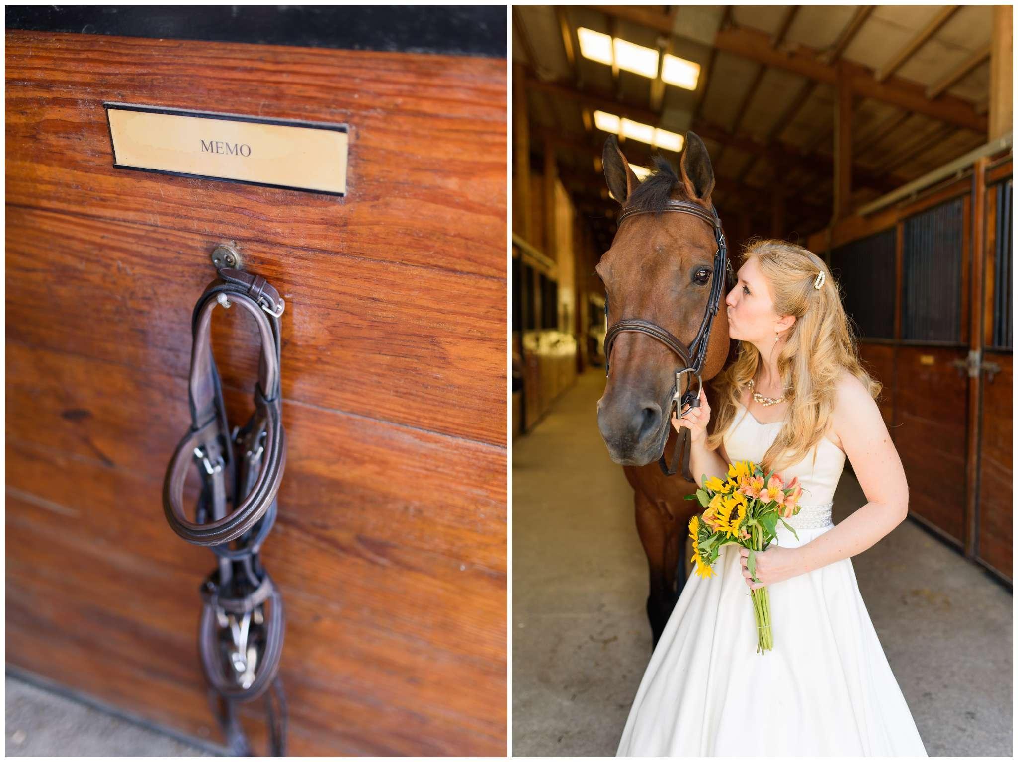 Equestrian Bridal Portraits_3282.jpg