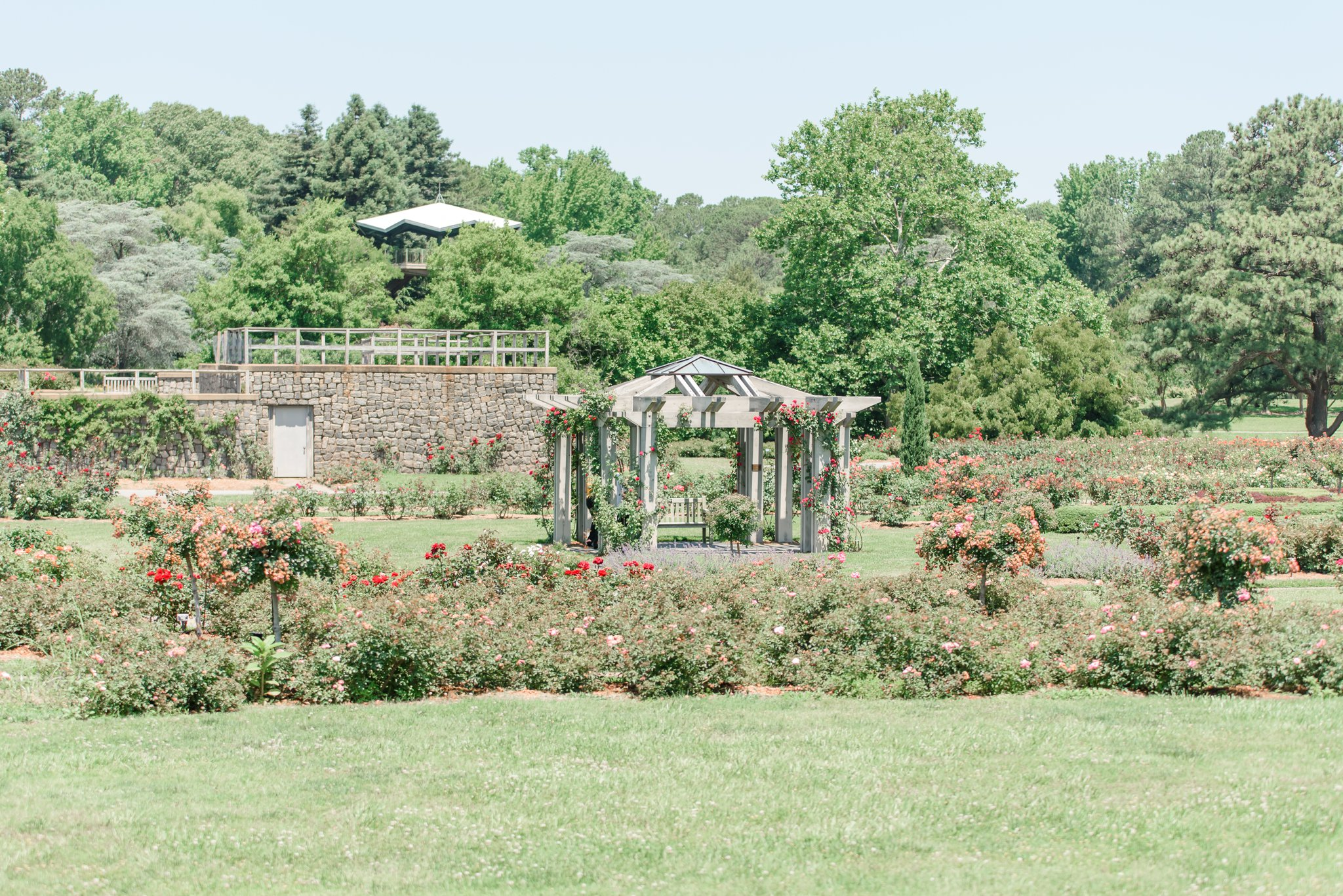 Luke had the Rose Garden reserved, so that after we toured the other side of the Botanical Gardens we could make our way to the private event - which was them! <3