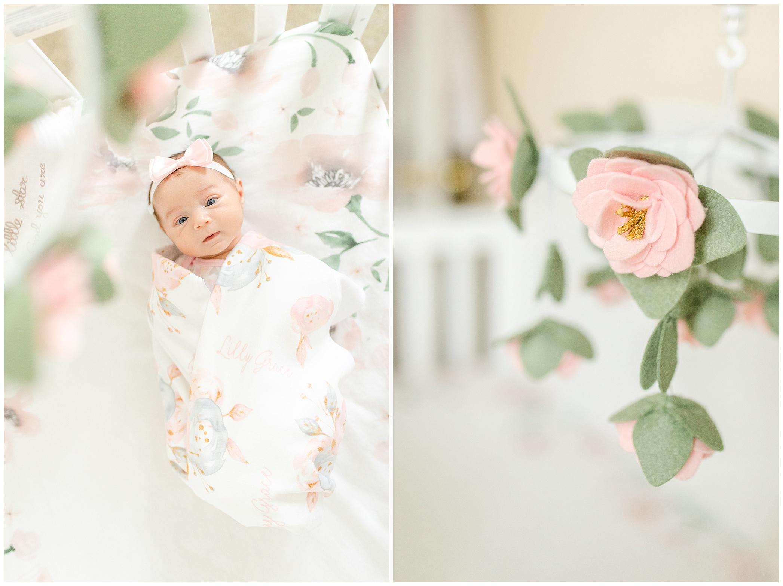 Nursery_2533.jpg