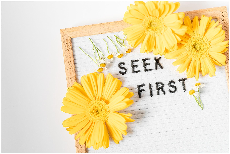 seek first_3678.jpg