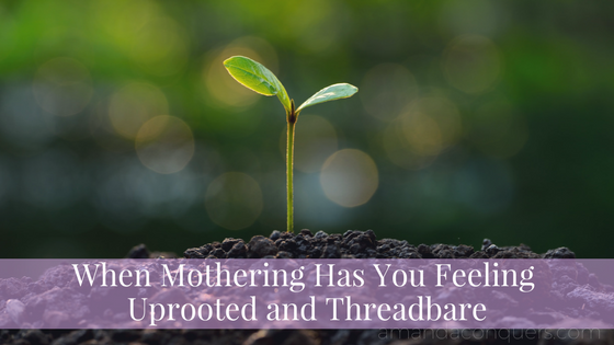 When Mothering Has You Feeling Uprooted and Threadbare.png