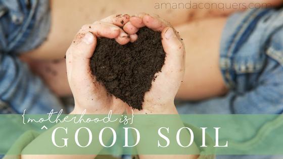GOOD SOIL.png
