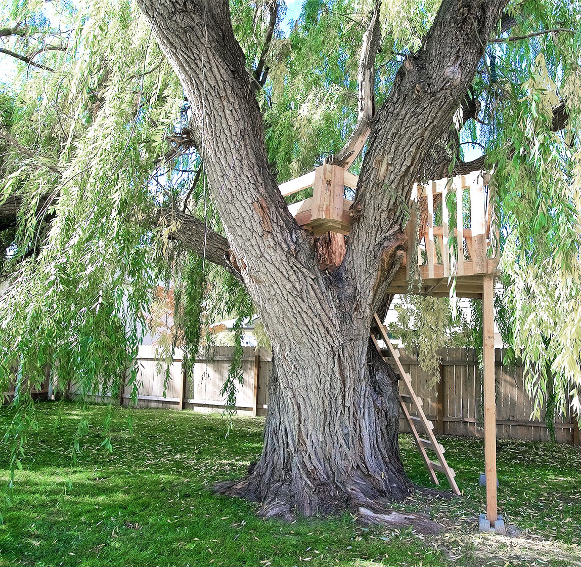 S2E01 - Willow Tree - Willow After.jpg