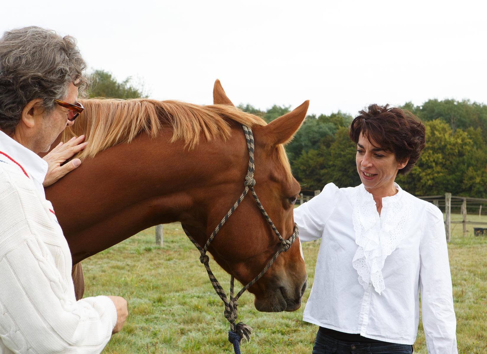 MichelChef d'entreprise - «Le coach en leadership m'a proposé, avec une impressionnante pertinence, la transposition immédiate de ma posture face au cheval, au monde professionnel.»
