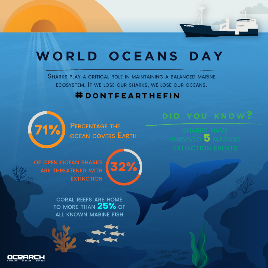 World Oceans Day - infographic & marketing materials