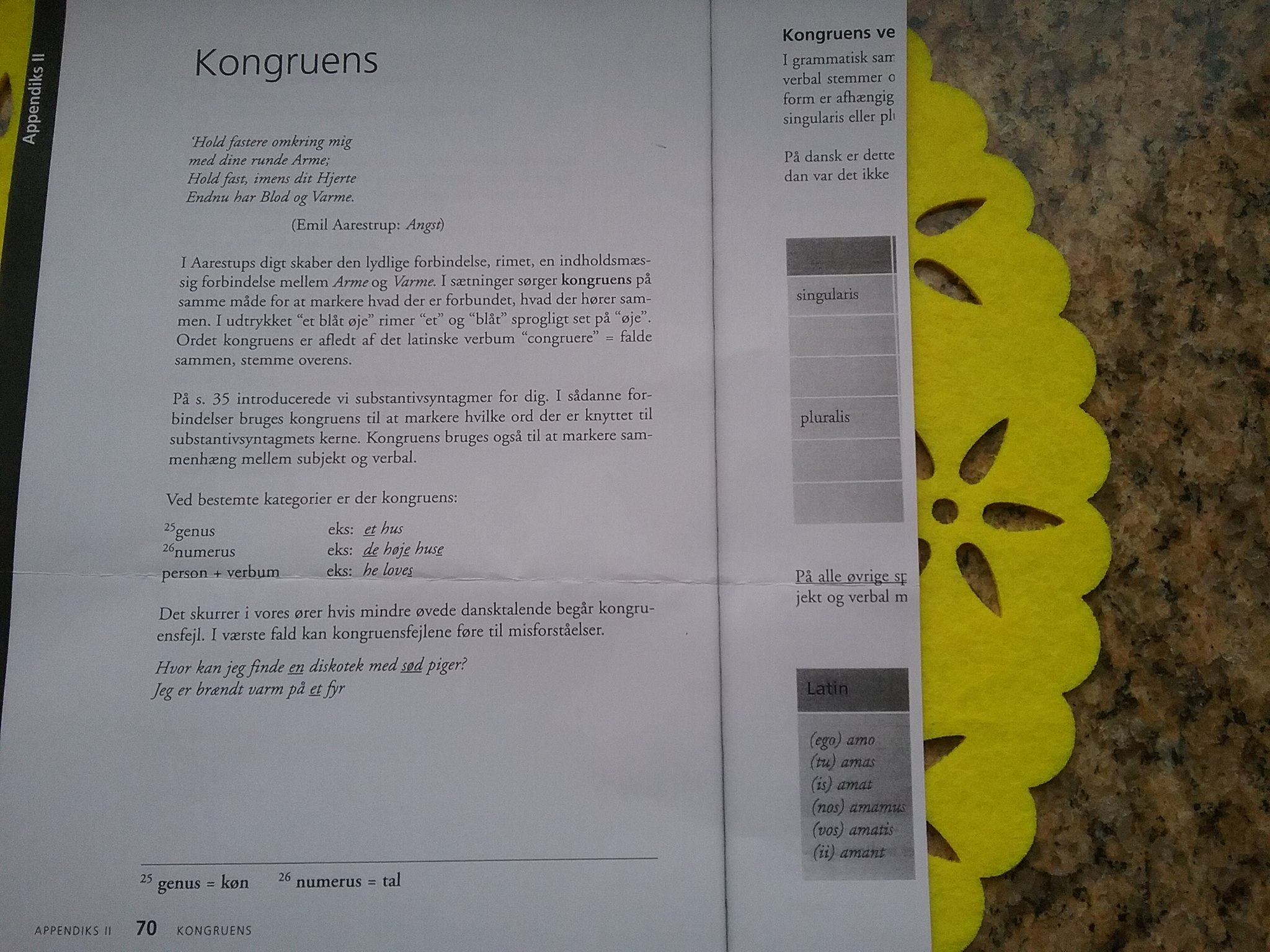 "I grammatiktikbogen Perleporten (1999) bliver ""Angst"" også gjort til sprogligt eksempelmateriale i demonstration ag kongruensbøjninger i det danske sprog."