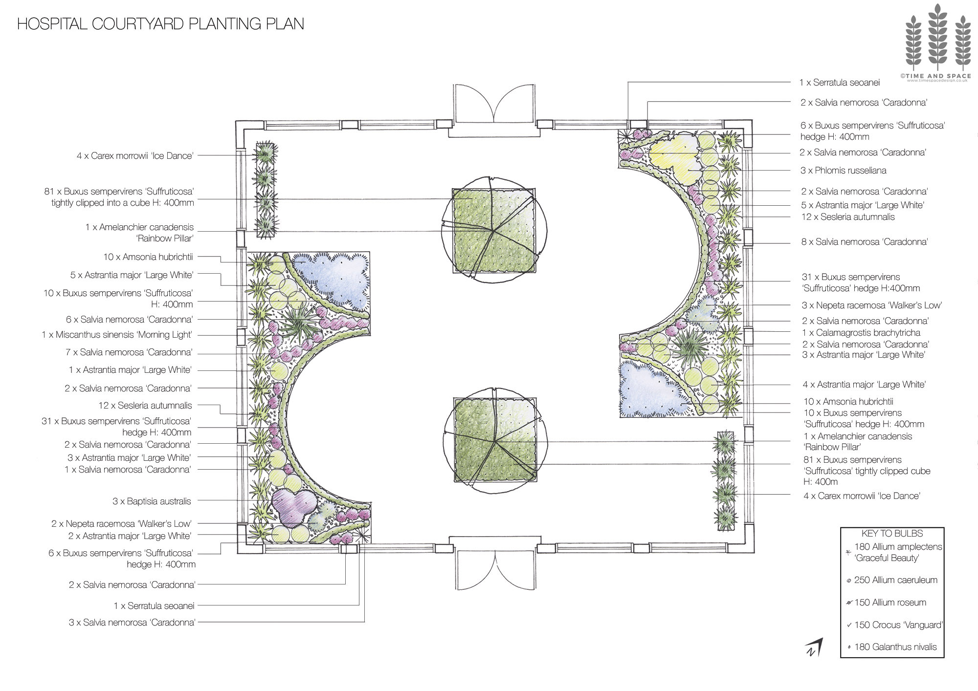 Planting scheme for a hospital courtyard