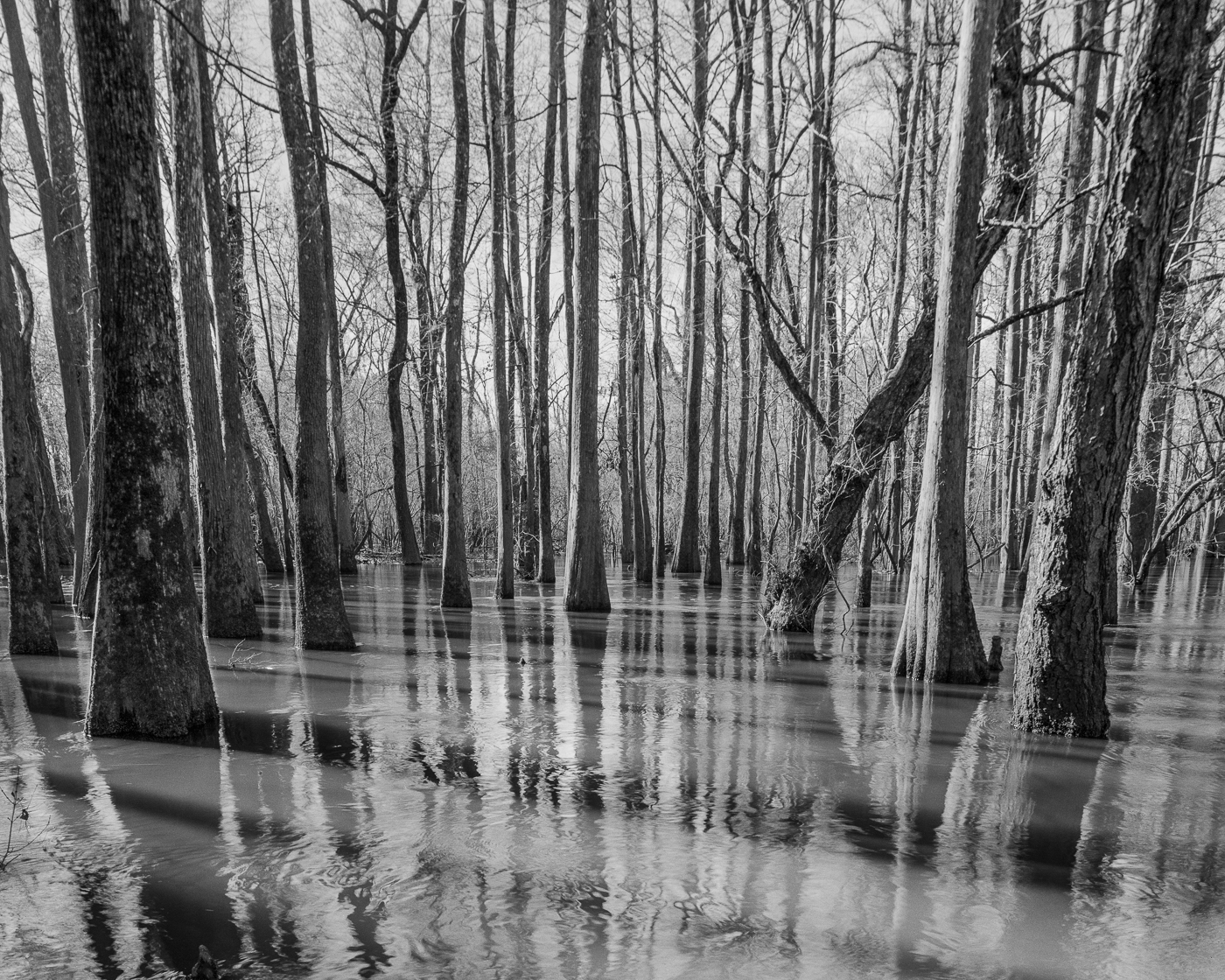 Lynches River, SC