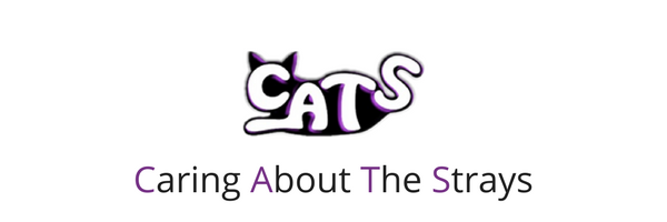 Caring About The Strays header logo.png