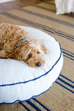 image via www.mackenziehoran.com