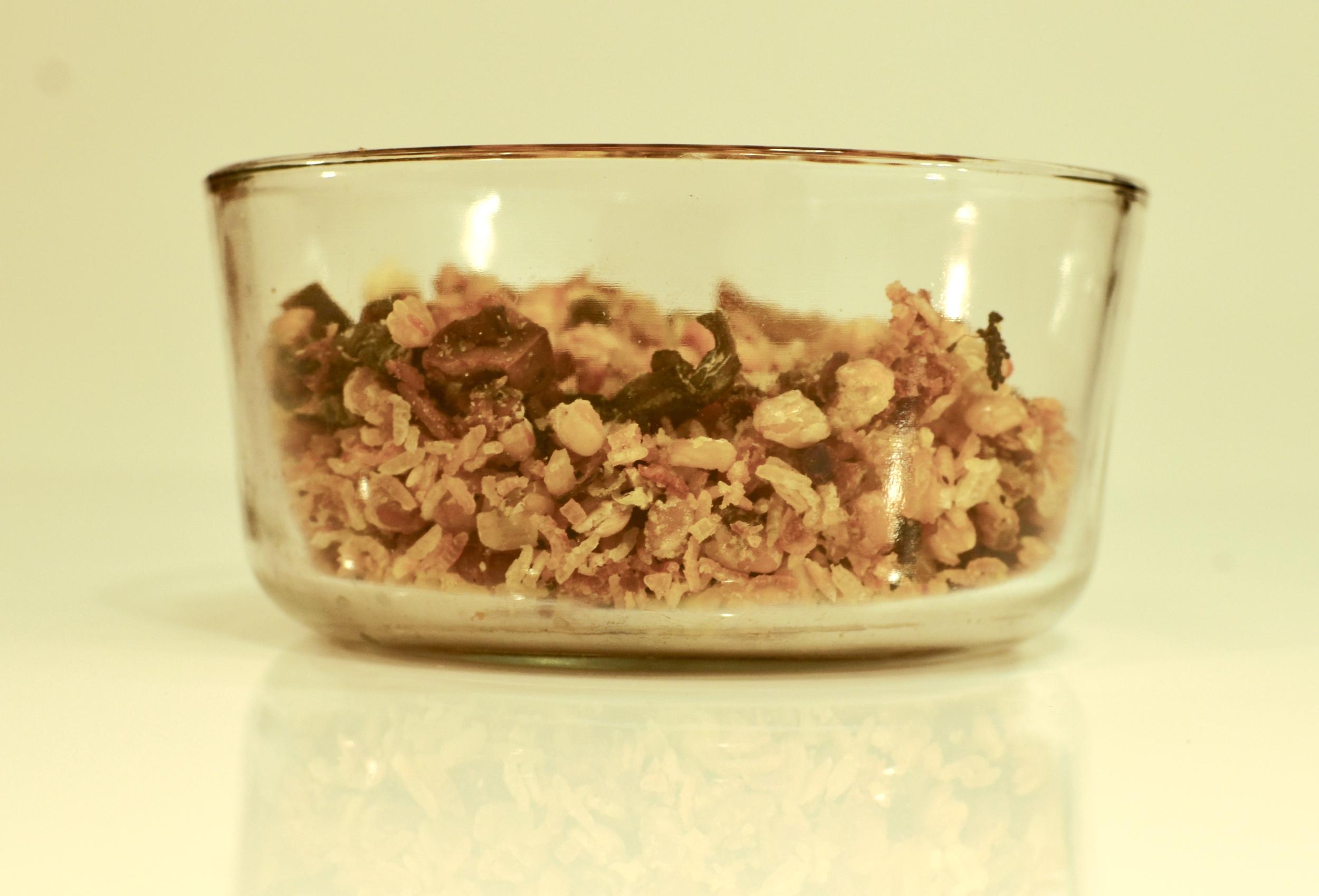 Last prototype - dehydrated, nutrient-balanced hog feed