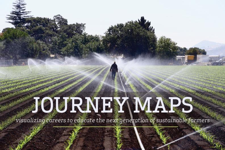 farmer worker walks a corn field in Gilroy, CA