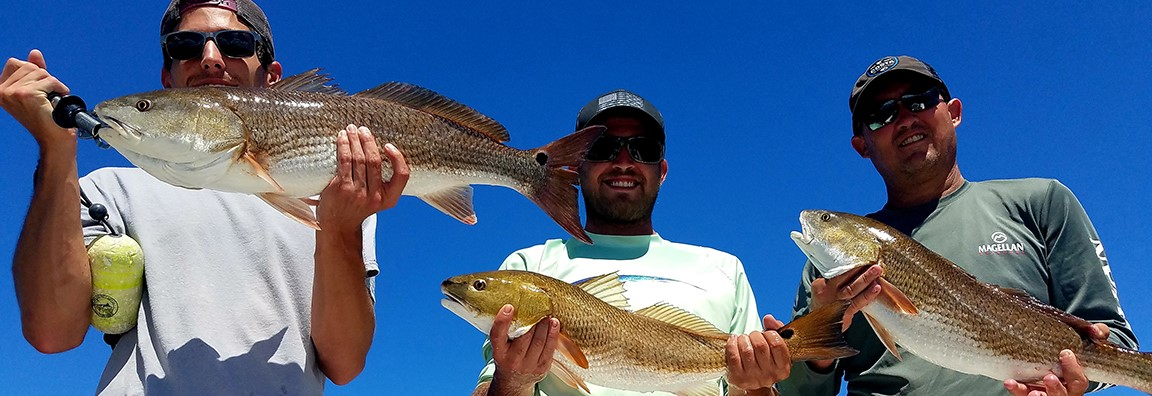 Captain Don Taylor Redfish catches