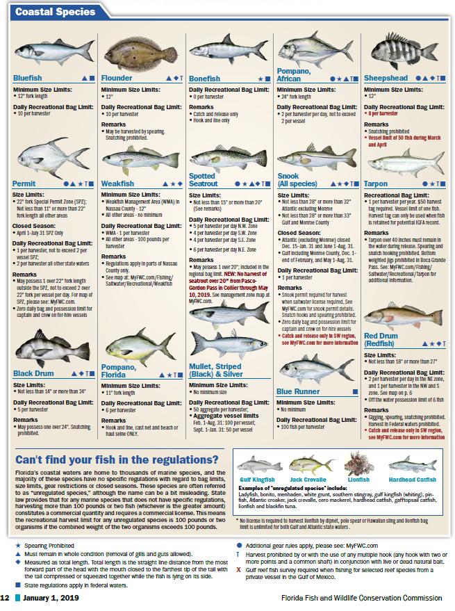 FL Saltwater Fishing Regulations - 3
