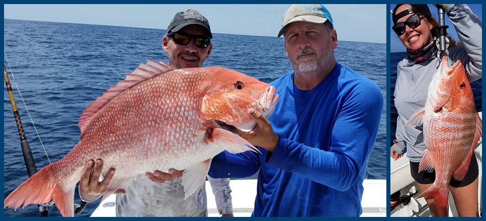 Red Snapper season in Jacksonville, FL
