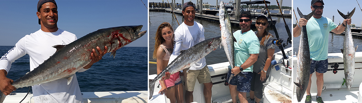 more kingfish photos caught by captain Chad Starling in Jacksonville