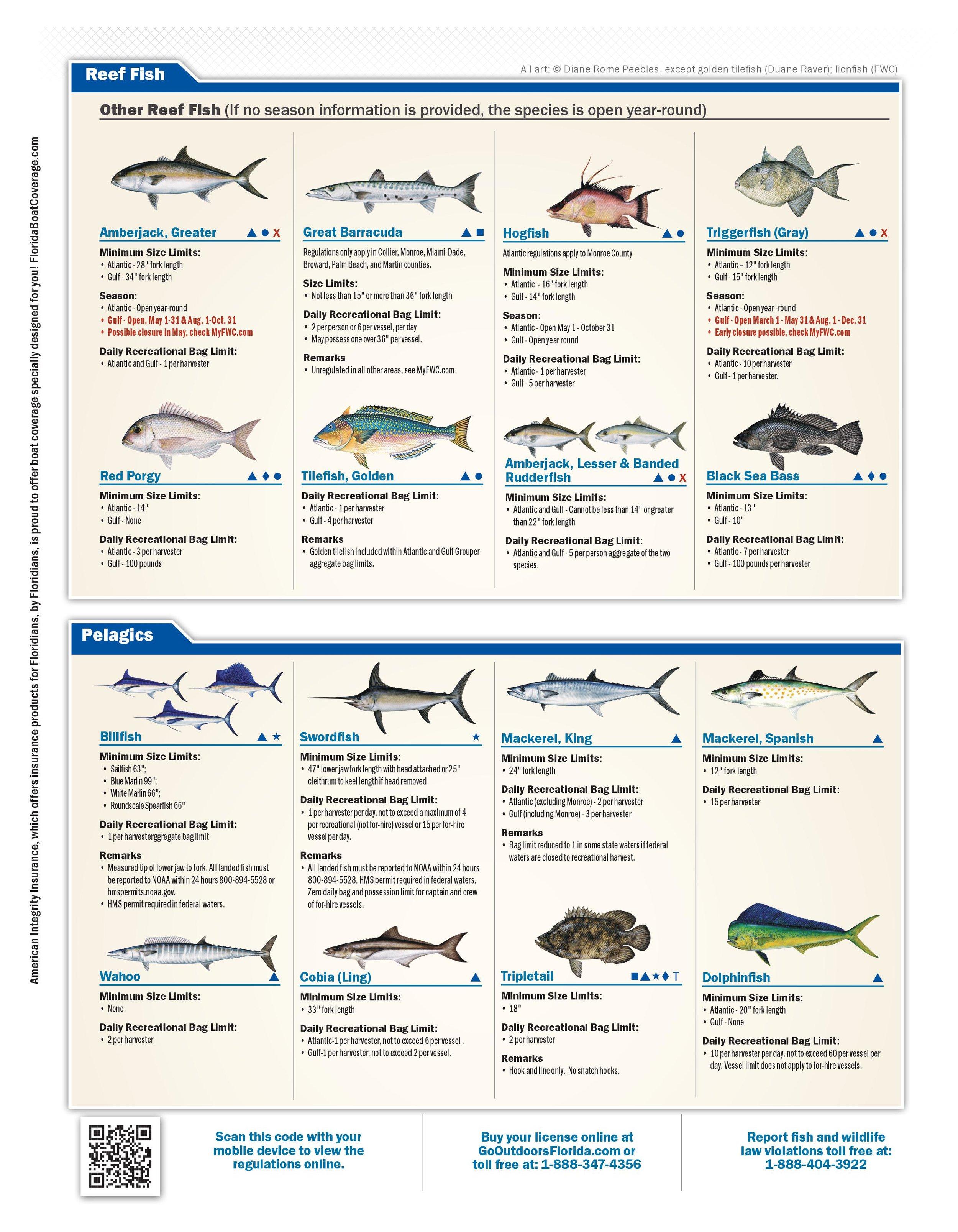Florida Saltwater Bag Limits - 2