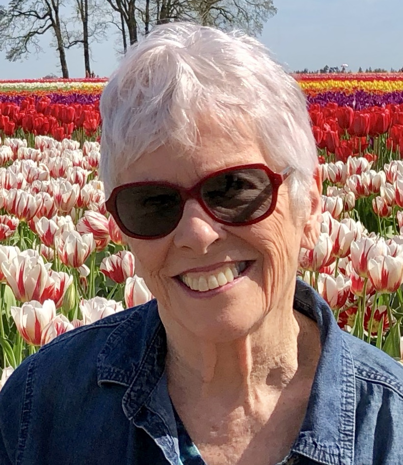 Joy Imboden Overstreet - Finished her manuscript in 6 months with Author Accelerator.