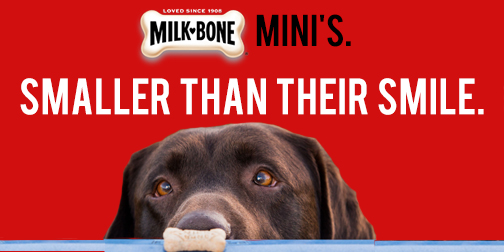 Spec work for a Milk-Bone Mini billboard