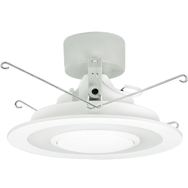 speaker downlight.jpg