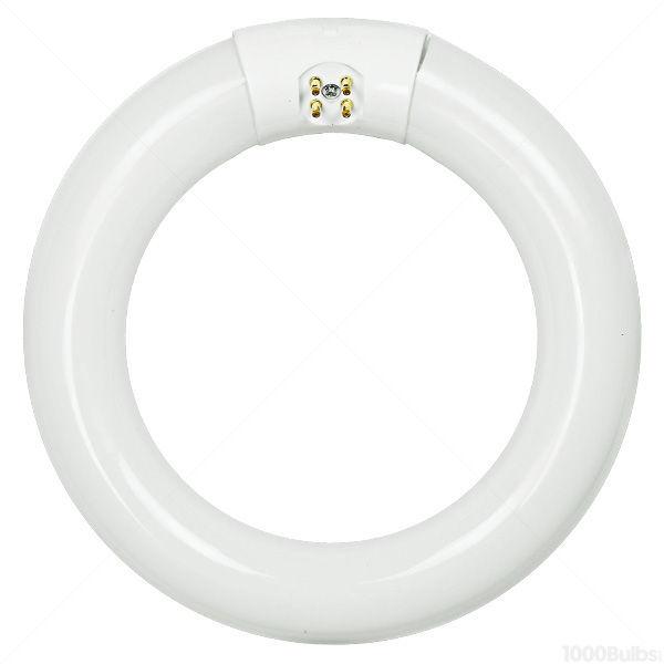 Circline Tube.jpg