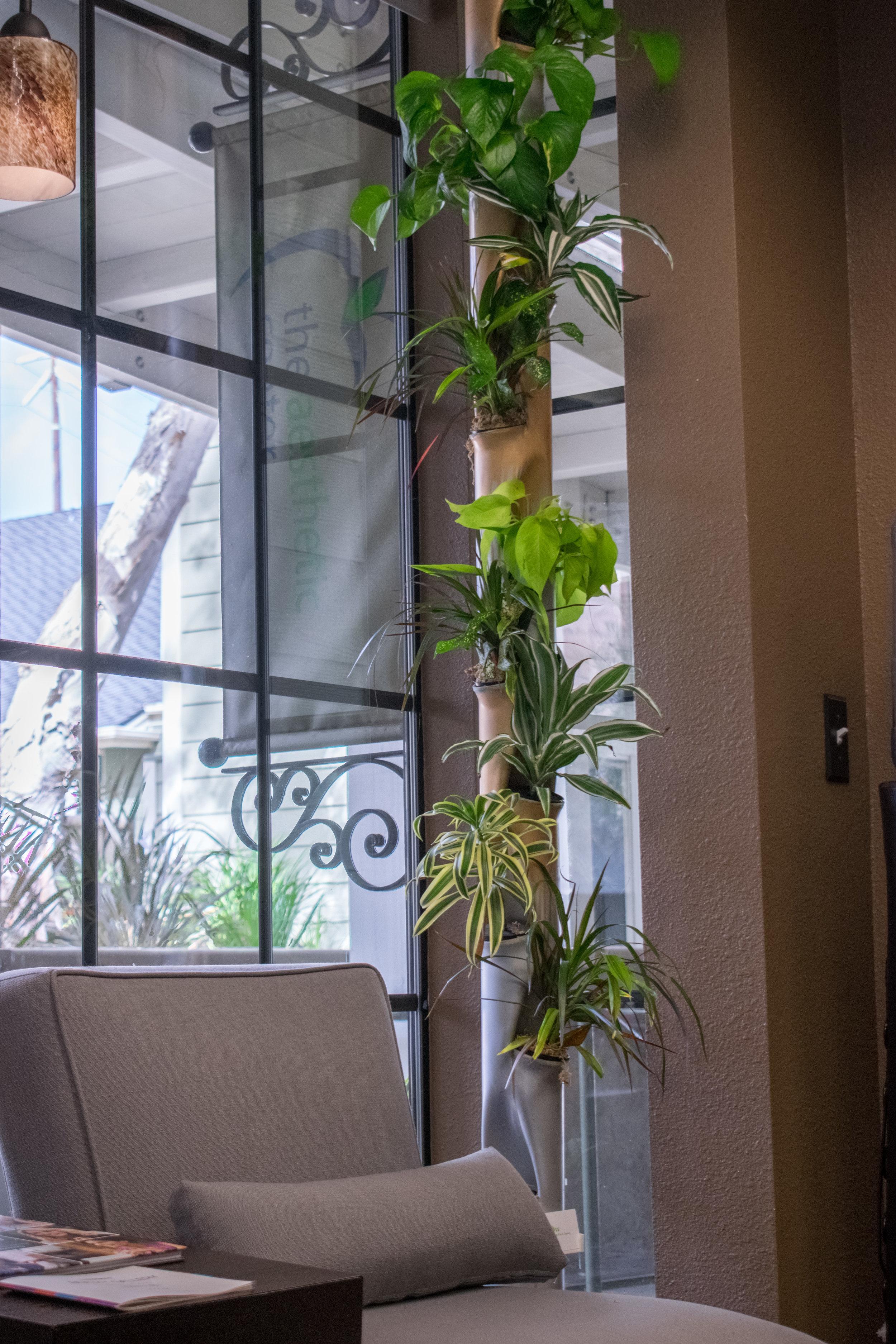 Aergrow Vertical Planter- The Aesthetic Center- 11.1.17-1.jpg
