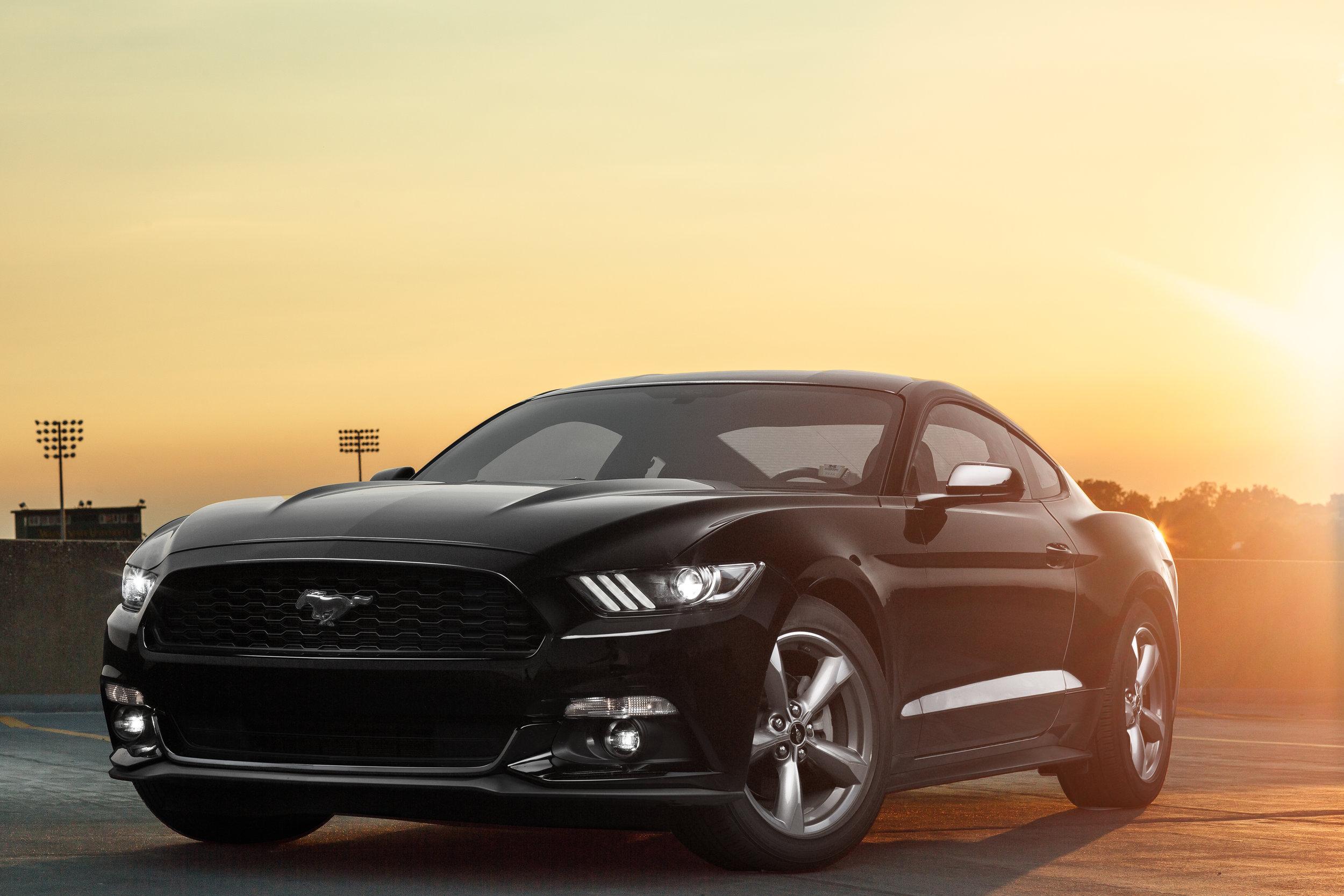 Mustang at Dusk